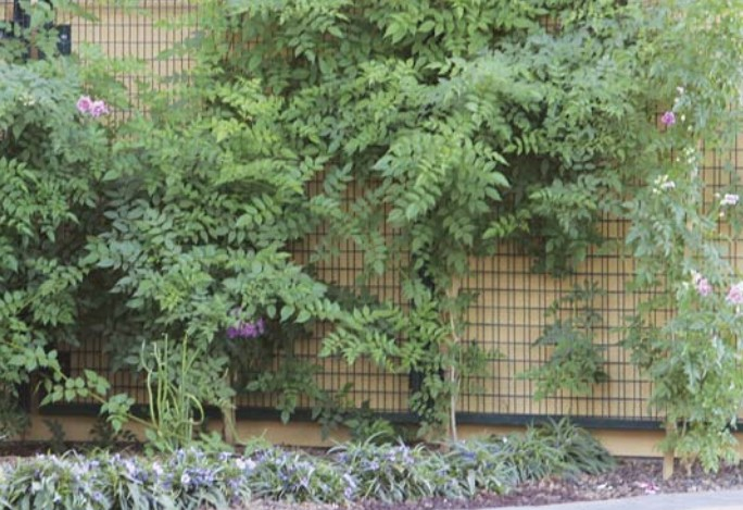 Material choice of exterior garden wire fencing shades